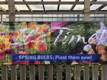 banner at garden centre featuring spring flowers