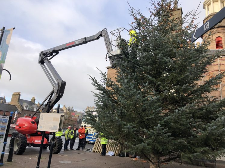 Cherry picker lifts man to place lights on tree