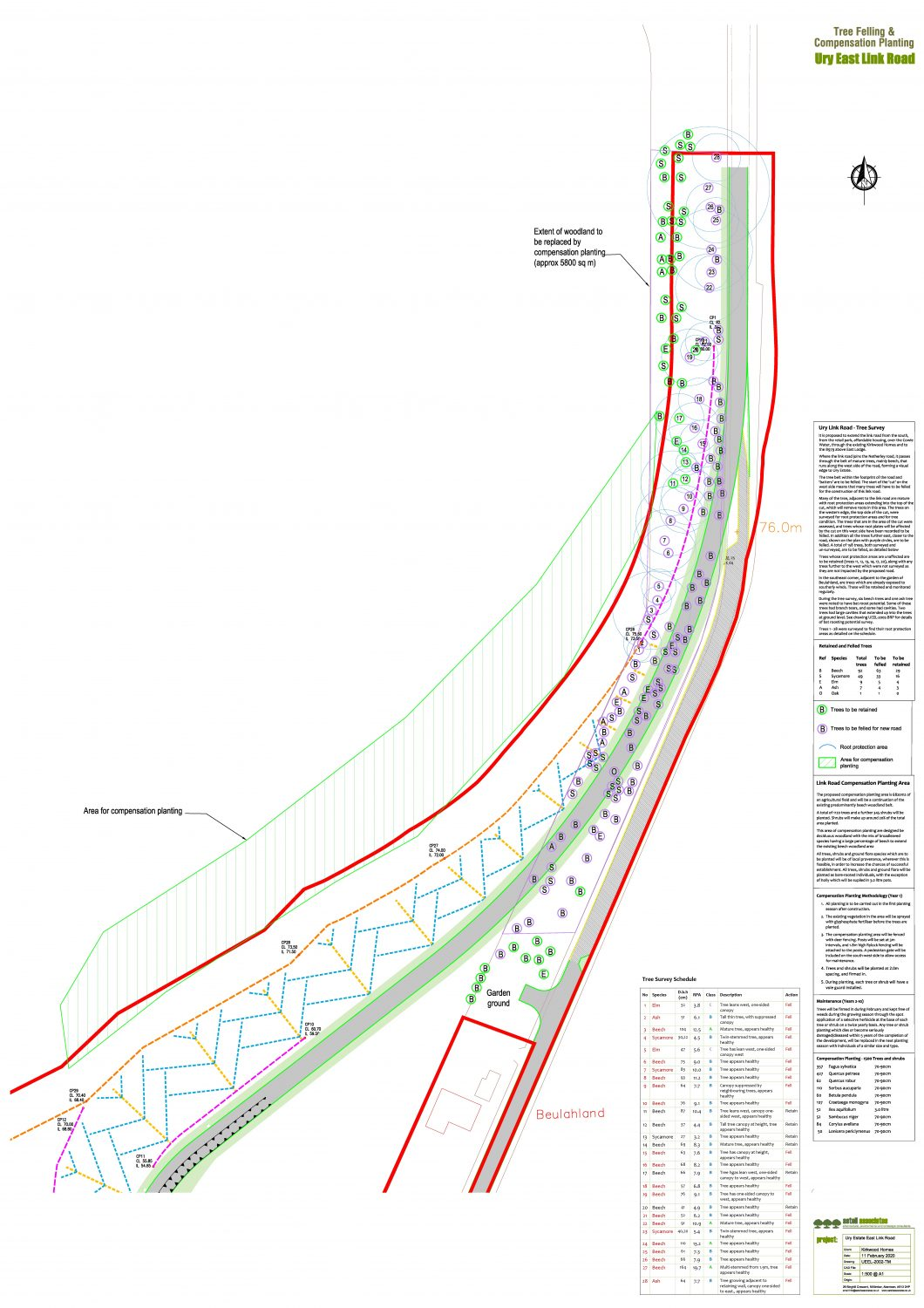 Plan showing trees to be felled